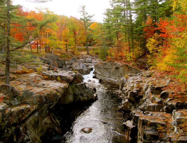 Coos Canyon, Maine, River, Water, Gold, Scenery
